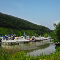 Marina Mittelmosel - Hafen| Wohnmobilstellplatz | Wassersport | Bootsverleih in Neumagen - Dhron an der Mosel